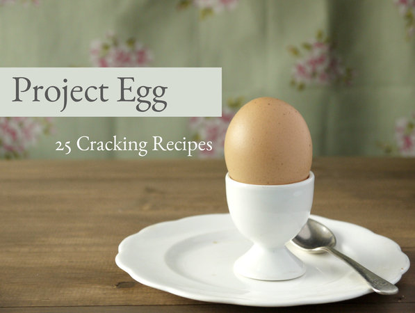 Project Egg