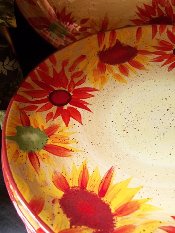Color Scheme Dishes Close Up