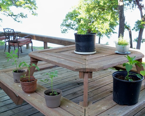 Picnic Table Garden 1