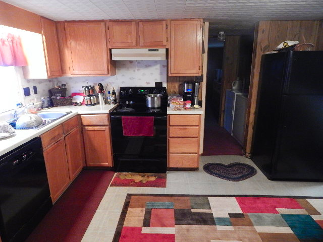 In My (Temporary) Kitchen ~ January 2015 (4/6)