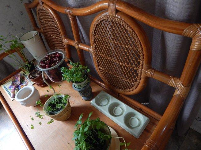 "Herb Garden ""After"""