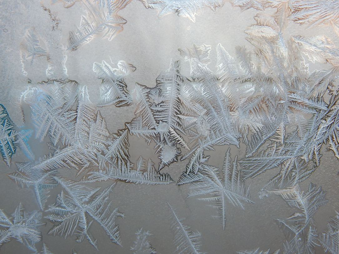 Frost 1
