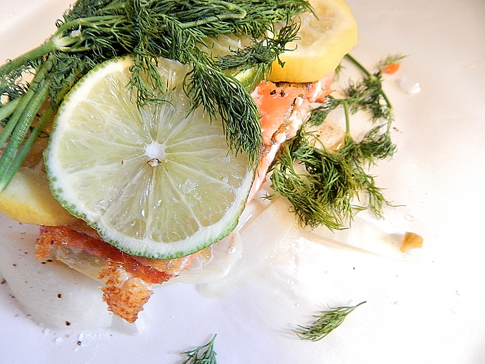 Seared salmon with lime lemon & dill