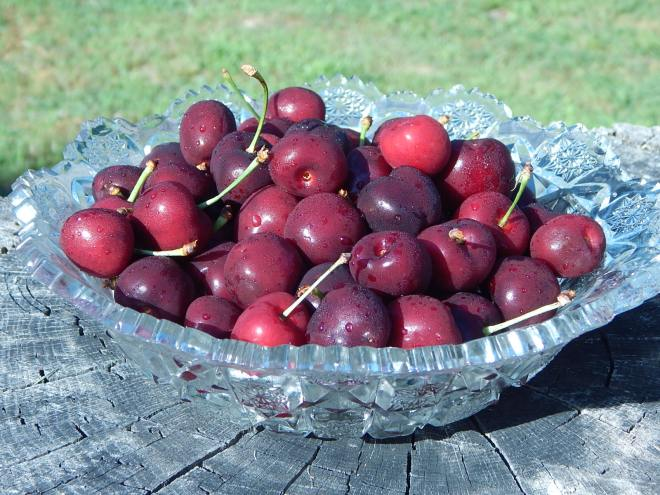 Bowl Full of Cherries 1